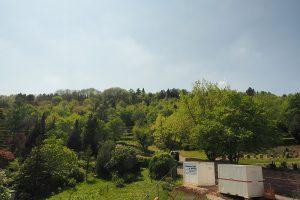 M. BAYER Baukoordination Eigentumswohnungen in Stuttgart-Wangen: Blick in den Garten